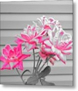 Pink Rose Tree Pop Metal Print