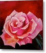 Pink Rose With Dew Drops Jenny Lee Discount Metal Print