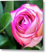 Pink Rose With Leaves Metal Print