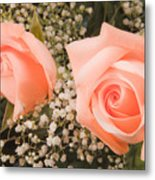 Pink Roses Fine Art Photography Print Metal Print