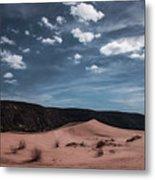 Pink Sand Dunes Np Metal Print