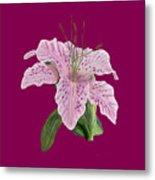 Pink Tiger Lily Blossom Metal Print