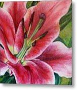 Pink Tiger Lily Metal Print