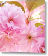 Pink Tree Blossoms Art Prints Spring Blossoms Baslee Troutman Metal Print