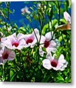 Pink Trumpet Flowers In Pilgrim Place In Claremont-california Metal Print