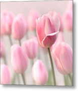 Pink Tulip Cloud Metal Print