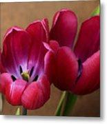 Pink Tulip Pair Metal Print