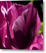 Pink Tulip Watercolor Metal Print