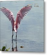Pink Wings Metal Print