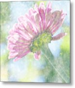 Pink Zinnia On Bokeh Background Metal Print