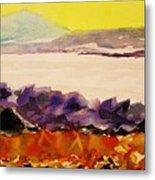 Pinnacle Mountain...arkansas River Metal Print