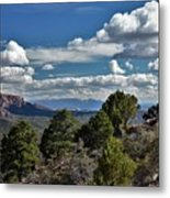 Pinon Forest At The Top Of Kolob Canyon Metal Print