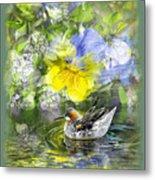 Pintail Pond Metal Print by Chuck Brittenham
