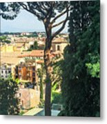 Pinus Pinea Metal Print