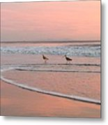 Pipers In Pink Metal Print