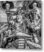 Pirate Captain And Parrots Black And White Metal Print