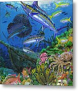 Pirates Reef Metal Print