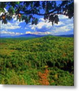 Pisgah State Park Ridge Trail View Metal Print