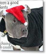 Pit Bull Christmas Two Metal Print