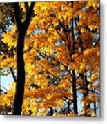 Pitchfork In Autumn Light Metal Print