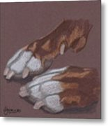 Pitty Feet Metal Print by Stacey Jasmin
