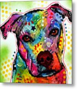 Pity Pitbull Metal Print by Dean Russo