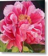 Pivoine Rose Metal Print