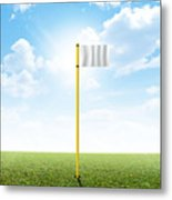 Plain Grass And Blue Sky Metal Print