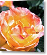 Planet Of The Rose Metal Print