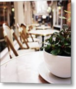 Plant In A Cup In A Cafe Metal Print