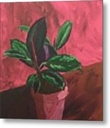 Plant In Ceramic Pot Metal Print
