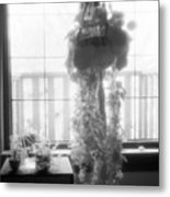 Plant In The Window  Metal Print