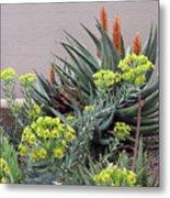 Plant Life Metal Print
