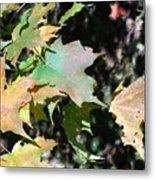 Planting Fields / Leaves Metal Print