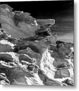 Plants And Birds And Rocks And Things Metal Print