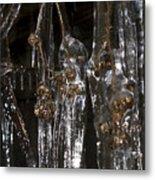 Plants On Ice Metal Print