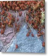 Plants On The Rock Two  Metal Print