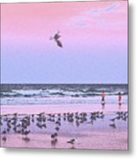 Play At The Beach Metal Print