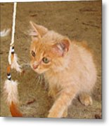 Play Time With Kitty Metal Print