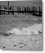 Playing In The Waves Metal Print