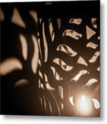 Playing With Shadows Metal Print