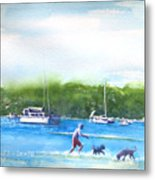 Playing With The Dogs At Rose Bay Metal Print