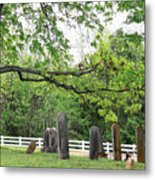 Pleasant Forest Cemetery Metal Print