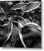 Please Don't Leave Me Alone Metal Print