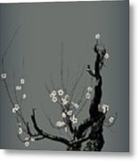 Plum Flower 3 Metal Print