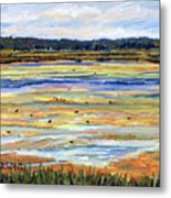 Plum Island Salt Marsh Metal Print