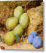 Plums And A Rose Hip On A Mossy Bank Metal Print