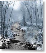 Pocono Mountain Winter Metal Print