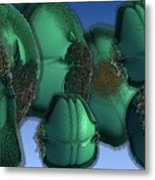 Pods Traveling In Groups Metal Print