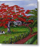 Poinciana Blvd Metal Print